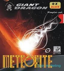 GIANT DRAGON -  Potah Meteorite